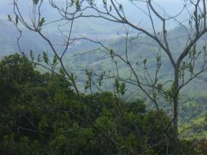 Der Blick von der Quelle auf das Dorf. Der Fußweg ist etwa 40 Minuten.