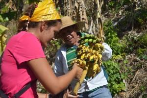 16-01 Freiwillige Andrea Nachhaltige Landwirtschaft Bananen