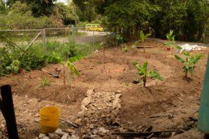 Bau des Gartens