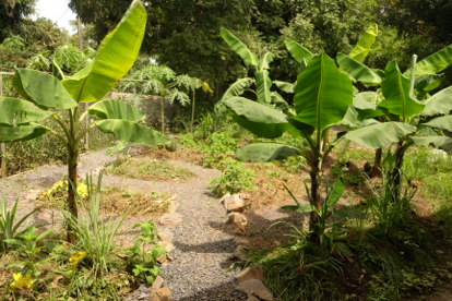 """Projekt """"Permakultur-Garten"""""""